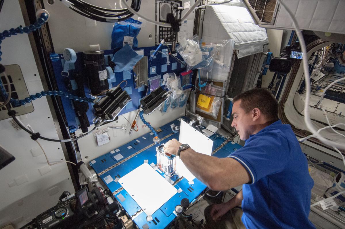 Expedition_36_flight_engineer_Chris_Cassidy