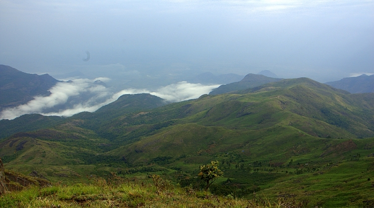Walking Through The Best Attractions Of Kodaikanal