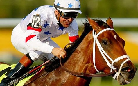 Pick-a-Winning-Horse