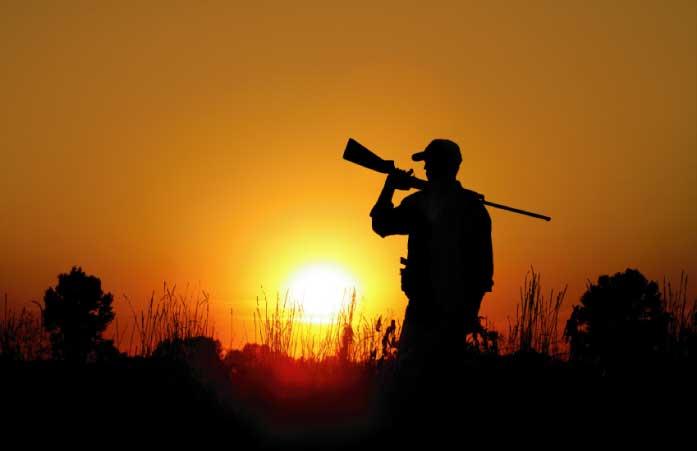 hunter@sunsetV3