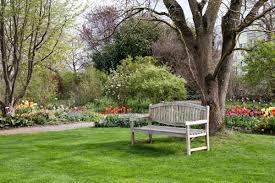 Nurturing Your Lawn