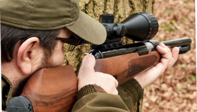 The Expert's Guide To Choosing The Perfect Air Rifle