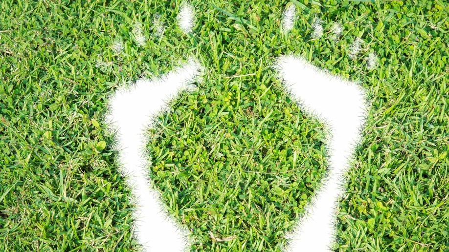 3 Ways To Help Reduce The Carbon Footprint Of Your House