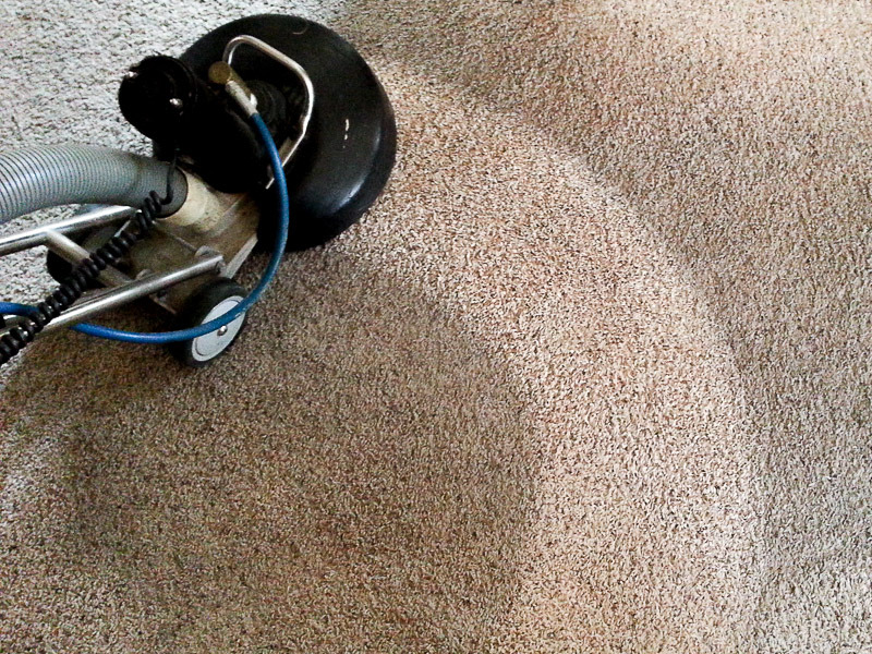 Consider Hiring Expert Carpet Cleaners For Water Damaged Carpets
