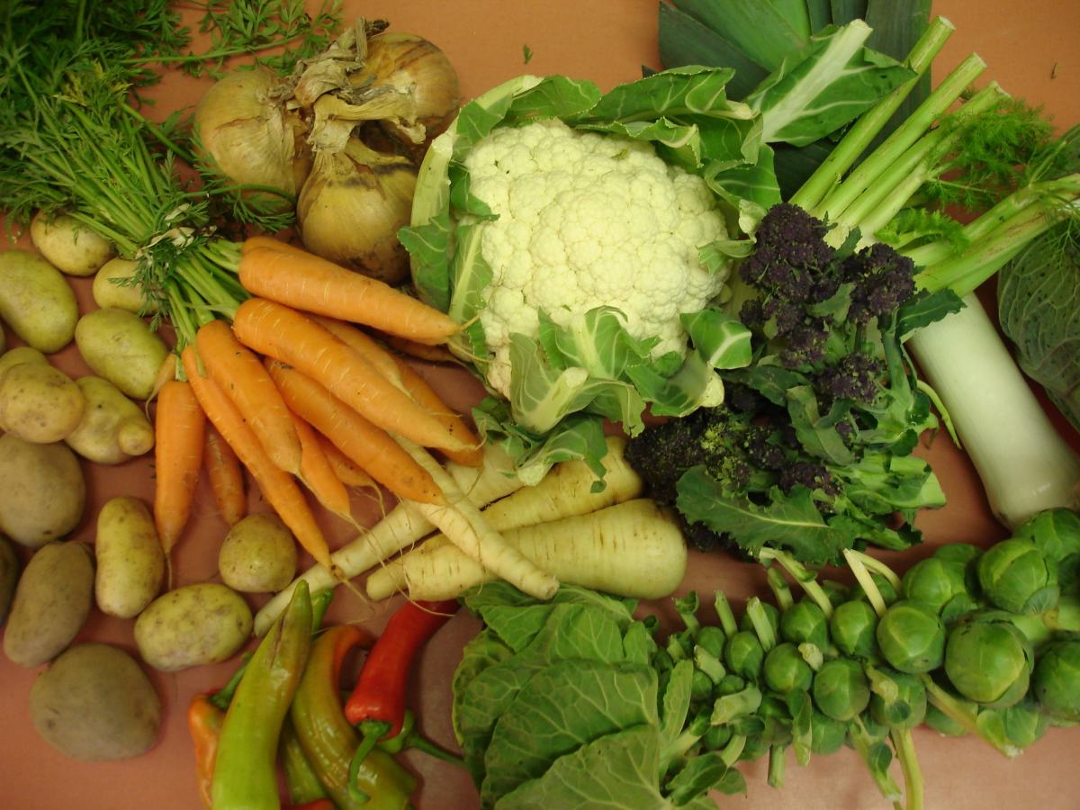 Learn about the Forecast for Foods that are Grown Organically