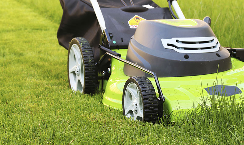 Great Lawn Care Calgary Tips on Making Your Garden Healthier and Green!