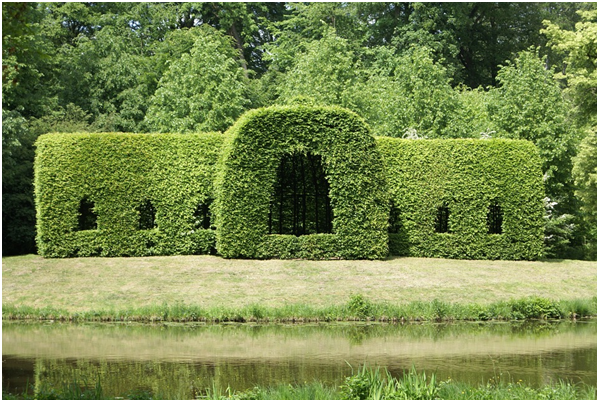 5 Effective Methods To Keep Your Hedges Trimmed