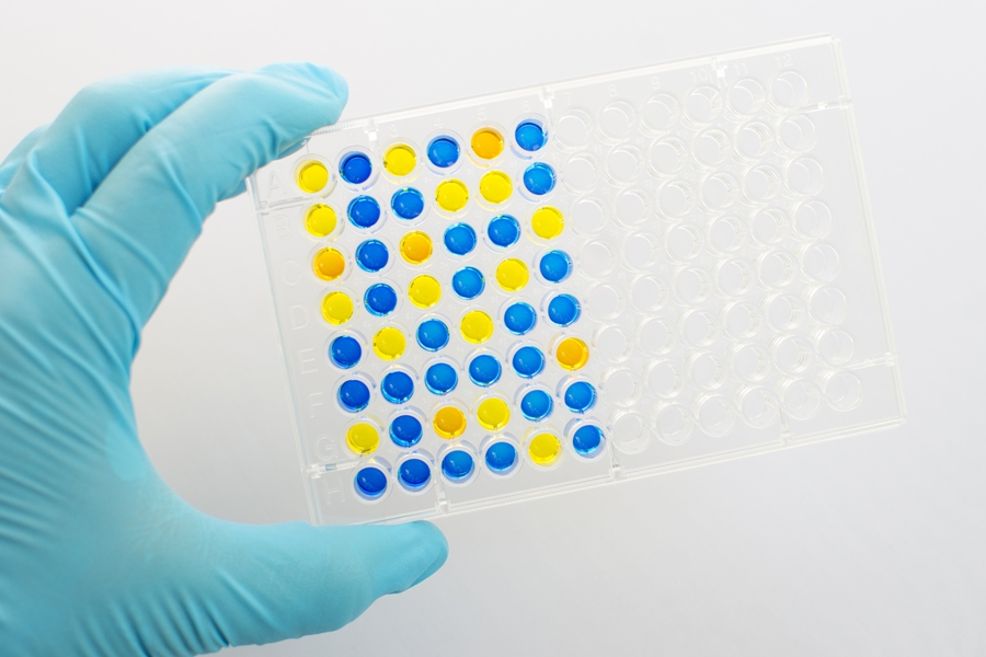 What Is Secondary Elisa and What Is It Used For