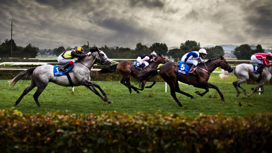 How Can I Prepare For My Very First Horse Racing Game?