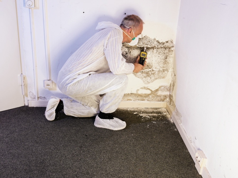 Allergies Getting Worse? How To Prevent Mold In Your Home