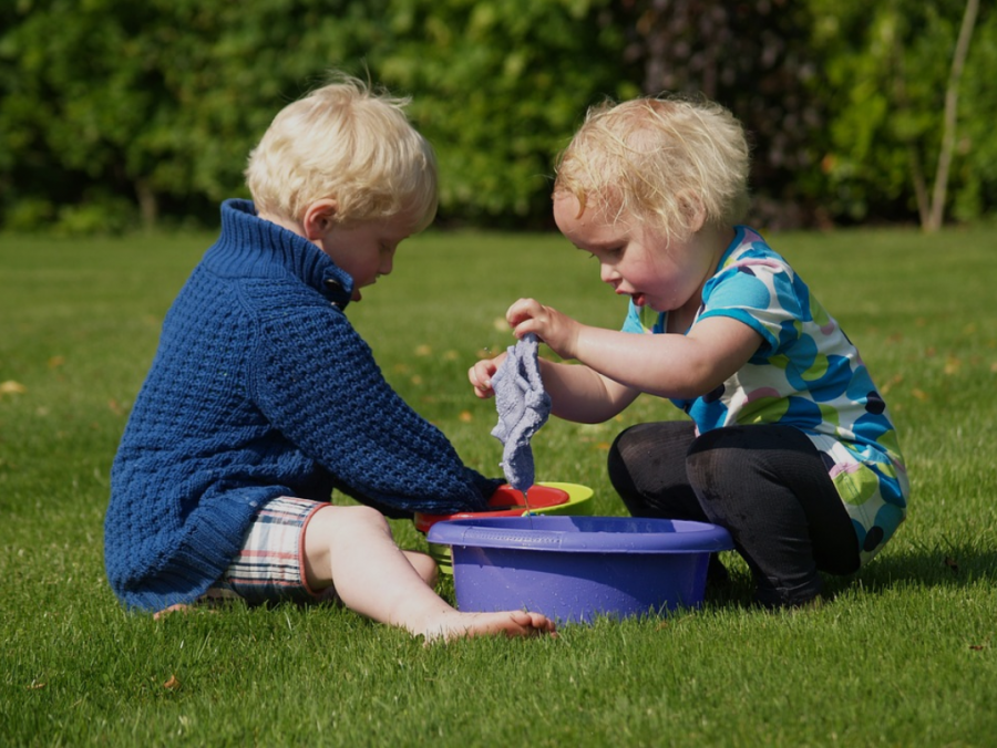How to Implement Pest Control In Your Home With Young Children